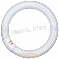 Лампа люминесцентная DELUX 32W/33 Т9 кольцевая