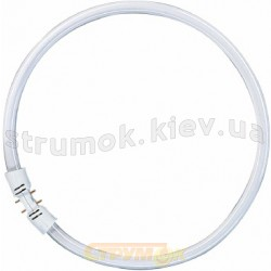 Лампа люминесцентная FC 55W/840 2GX13 круглая OSRAM