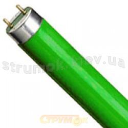 Лампа люминесцентная Osram L58W66 G13 зеленый цвет