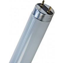 Лампа люминесцентная T8 L36W/77 G13 OSRAM (1199.4mm) для растений аквариума